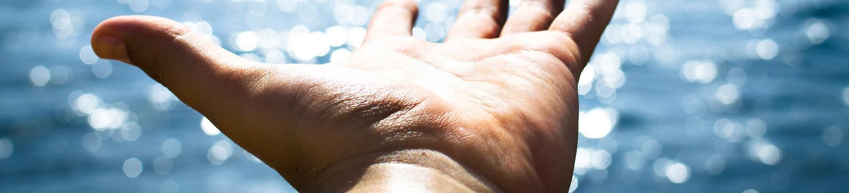 Die prostata anatomie und funktion